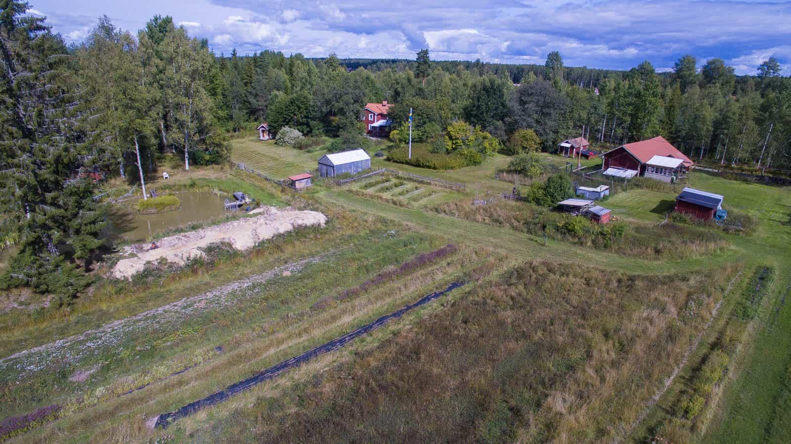 Här är gården från det stora fältet som var granskog när jag flyttade hit.