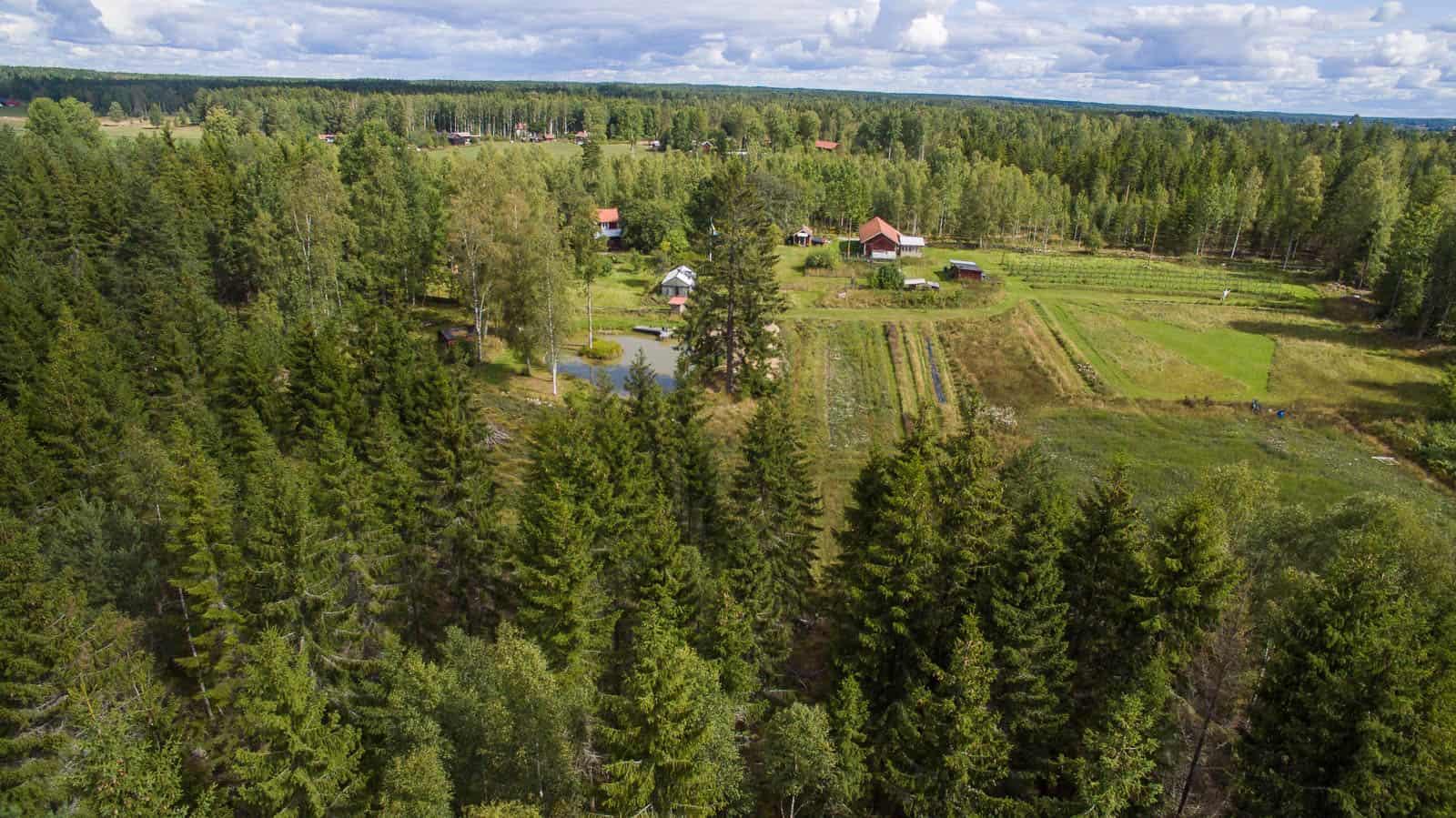 Och från sydsidan. Lämnar man gården åt det här hållet är det bara mil med skog.