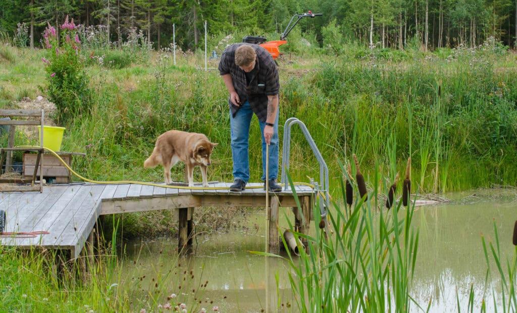 Här mäter jag och Pumah vattenståndet i dammen. Jag har satt ett streck på mätpinnen där bryggkanten ska vara så jag får rätt värde varje gång.