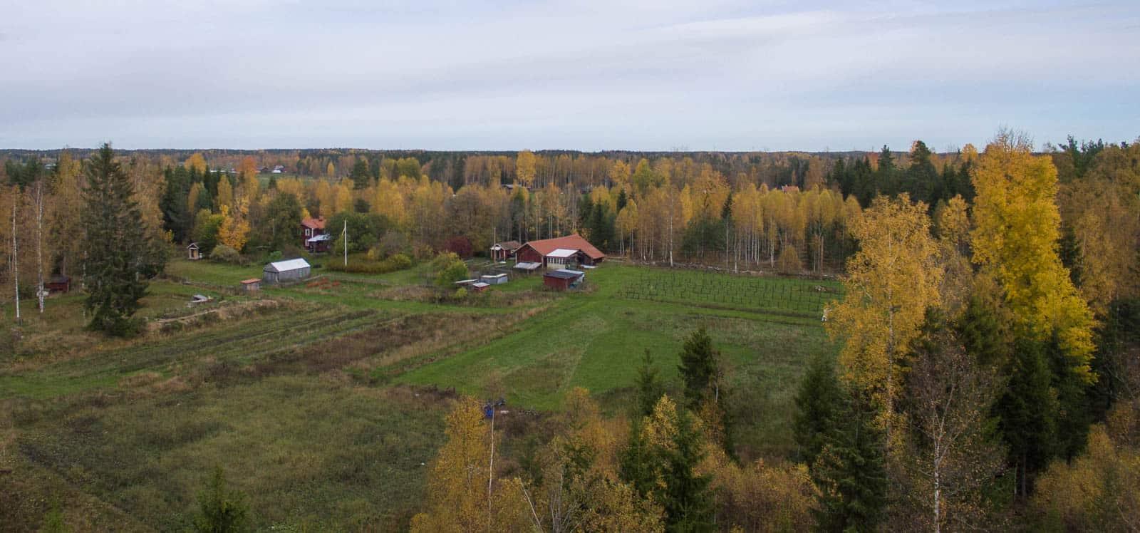 Nu är hösten här på allvar även om det fortfarande är ganska milt. Första frosten har ännu inte drabbat Sörmland – men den kan slå till när som helst.