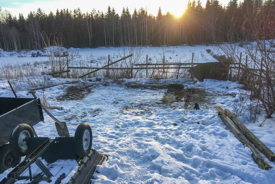 Här stod det gamla kaninburar under ett sönderblåst plåttak. De är nu borta och när snön smält bygger jag det nya hönshuset här.