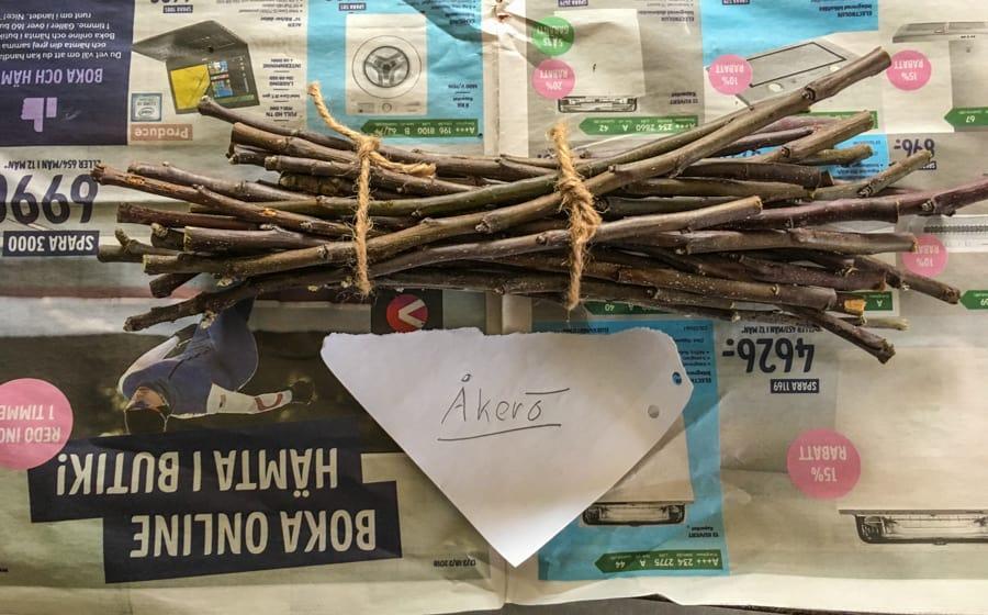Här är mina samling av ympris från Åkerö. Bara friska grenar. Nu får de vila i kylskåpet till det är dags för ympning. Viktigt att skriva vilken sort det är för snart får Åkerö sällskap av Katja, Rubinola och Santana.