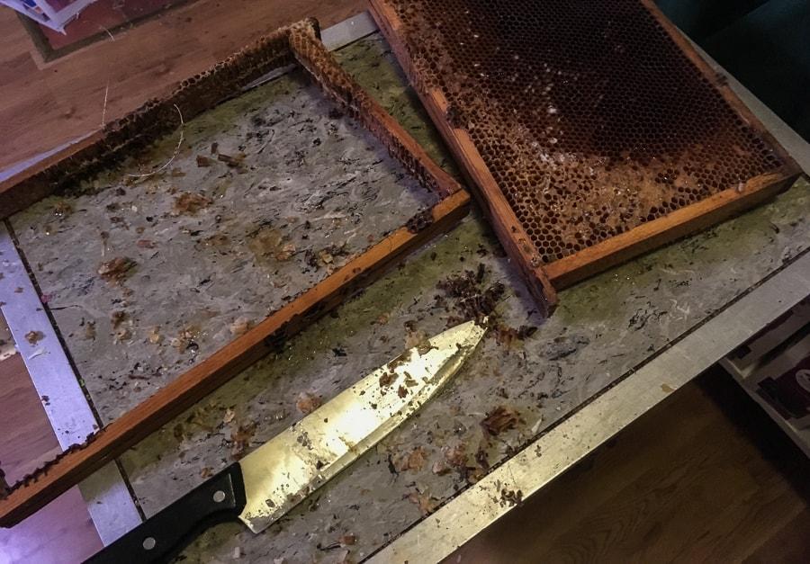 bSom all honungshantering är det ett kladdigt jobb att skära ut bivaxet ur ramarna.