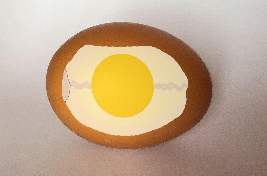 Ett ägg innehåller mer än bara gula och vita. Det är en perfekt liten överlevnadskammare, som är lika bra på att bevara mat.