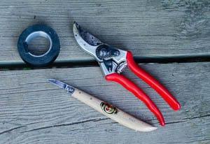 Förutom bivax använder jag vulktejp, sekatör och en riktigt vass kniv för att ympa äppelträd.