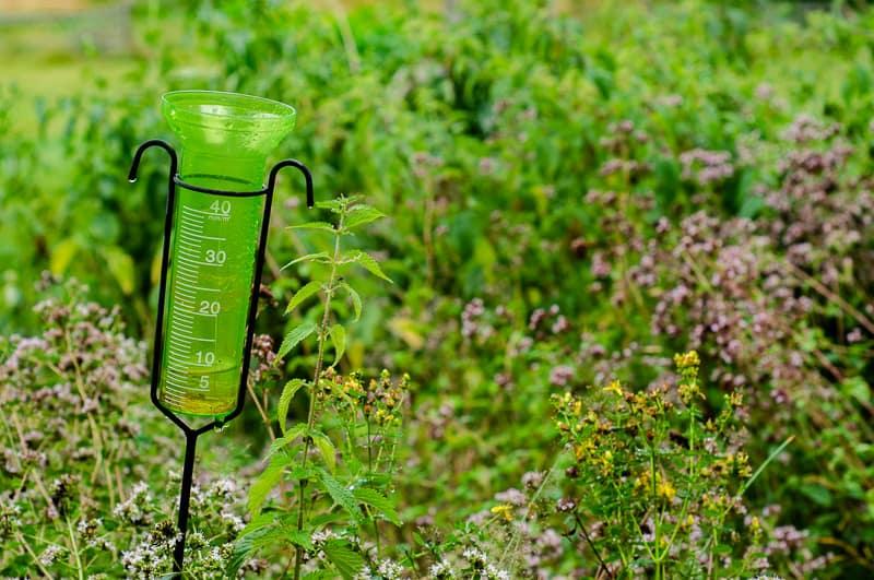 Varje droppe tas tacksamt emot numera och den en översvämning börjar med sju millimeter.