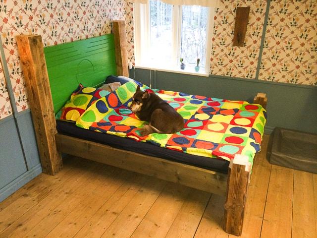 Varken jag eller hunden har några invändningar mot att tillbringa de varmaste timmarna i sängen.
