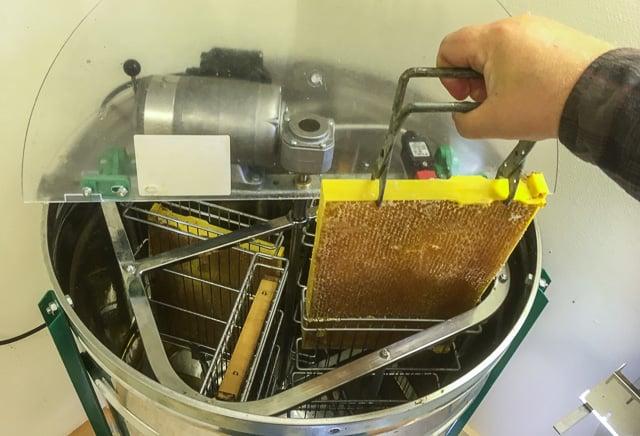 När ramarna är avtäckta är honungen blottad och jag kan sätta ner ramarna i slungan.