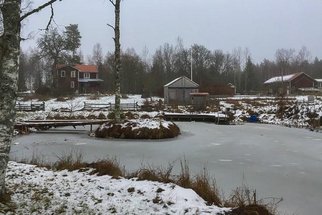 Det är varken riktig vinter eller något annat. Temperaturen runt nollan och varken snötäcke eller barmark. Bara gråväder och fukt – sådan är mellandagseran.