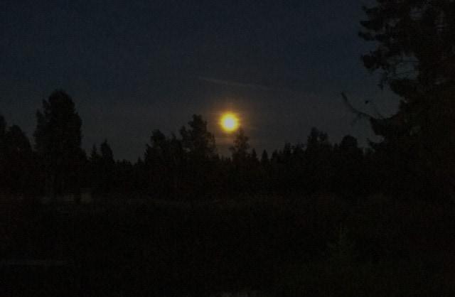 Har man tur är det fullmåna och snötäcke när strömmen försvinner. Då klarar man sig utan utebelysning i alla fall.