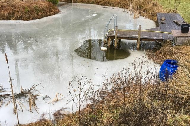 Det räcker med en mycket liten pump och ett flöda av frigolit för att hålla en vak öppen hela vintern.