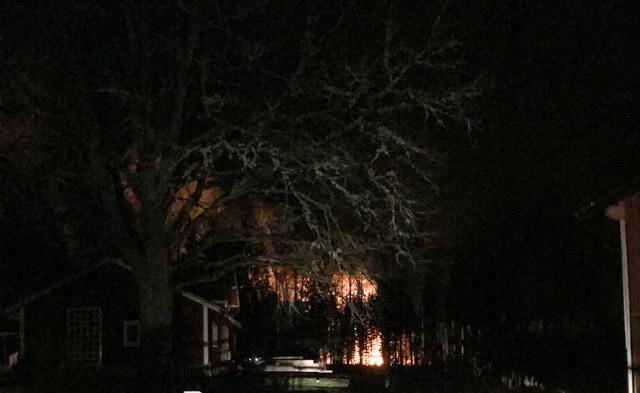 Grannarna som bor fem hundra meter bort  blev väckte och kunde bara se en vägg av eld genom skogen.Foto: Camilla Dahlman